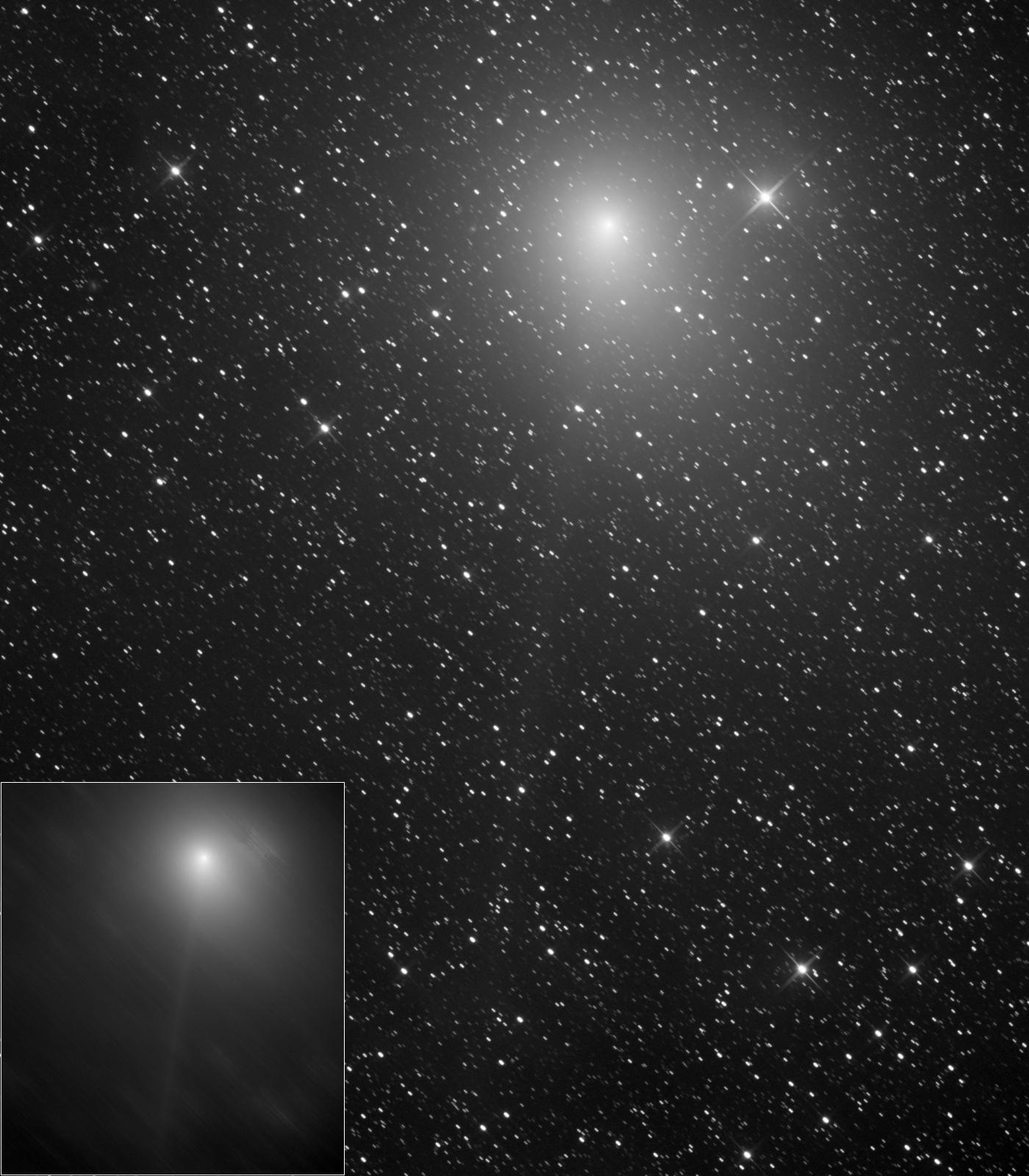 Comet 46P / Wirtanen - Martin Nischang
