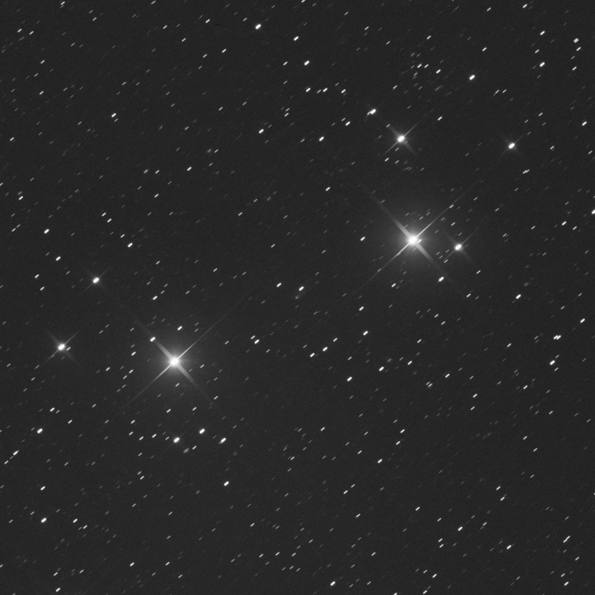 Comet C/2019 Q4 - Martin Nischang