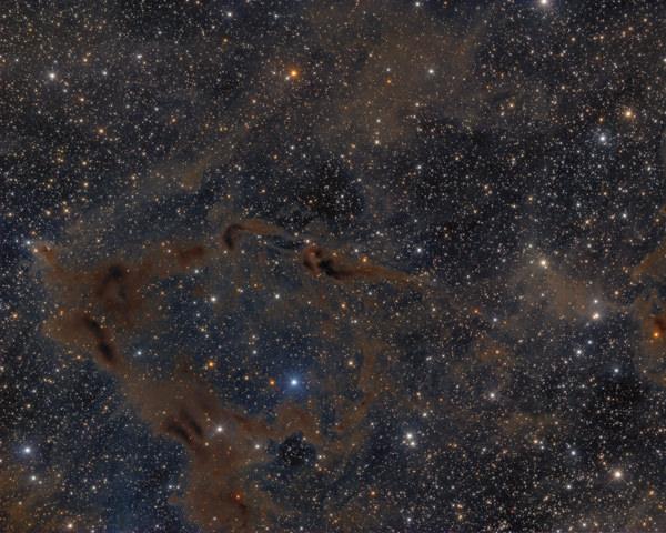 LDN 1152 in Cepheus