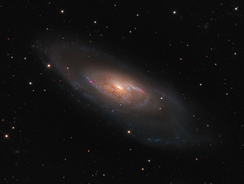 M106 David Bender Astrophotography