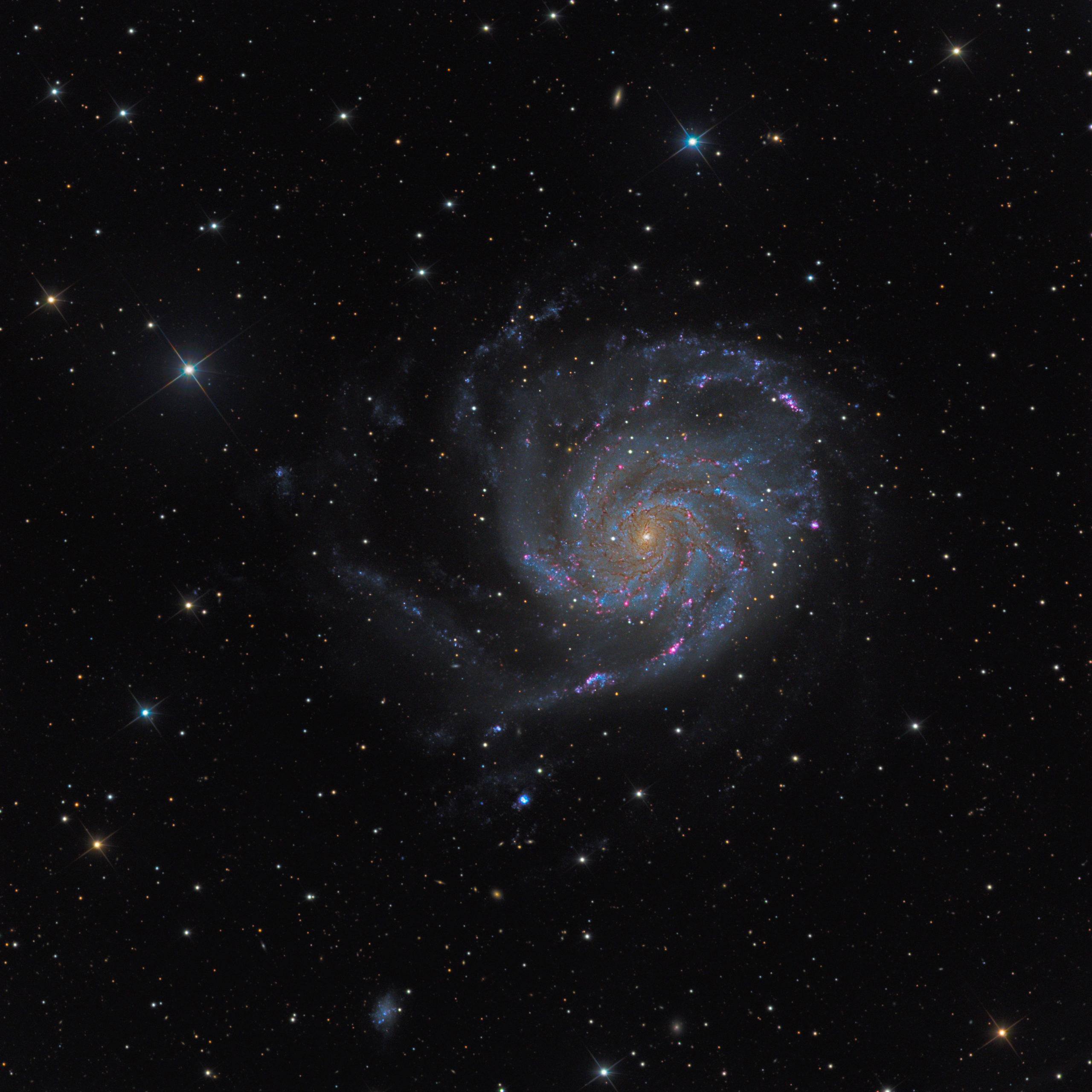 M101 Pinwheel Galaxy Martin Rusterholz